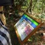 助川山で不動産を分譲していた