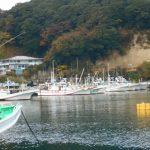 漁船の並ぶ港
