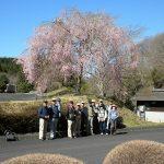 「きららの里」入園後、すぐ右側に植栽されている「盛岡枝垂れ」の前で記念撮影
