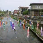 巴波川沿いを歩く(2)
