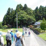 大けやきのある鹿島神社に向かう